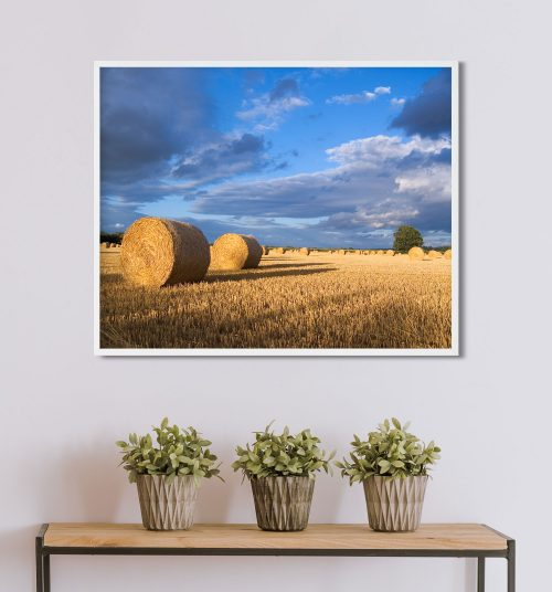hay bale farming framed art print