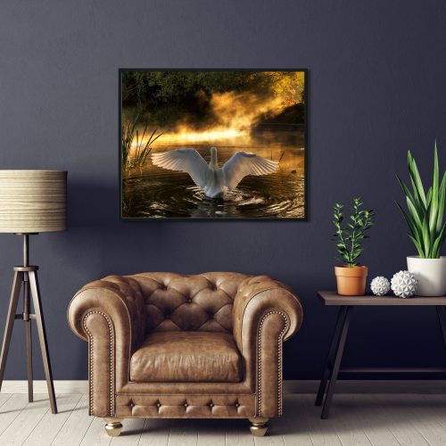 rising swan framed art print
