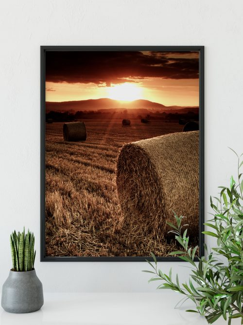 sundown hay bale sunset rural framed print