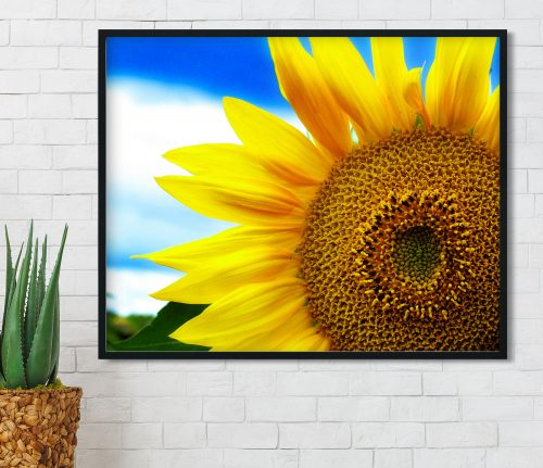 single sunflower wall art