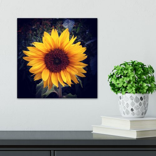 sunflower home decor wall print